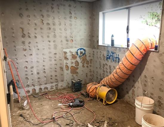 bathroom renovation by quintessential